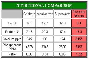 reptiworm nutrition