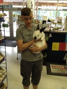 blackandwhiterabbit